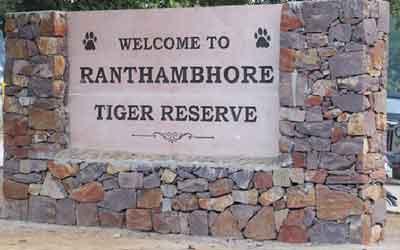 Ranthambore National Park Travel Guide