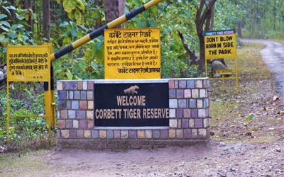 Corbett Tiger Reserve Jeep & Canter Safari Booking Schedule