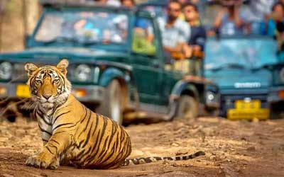 Ranthambore Safari Timings 2020-2021